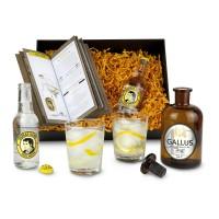 Gin Gallus 43