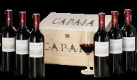 Capaia One - Der Stern Südafrikas